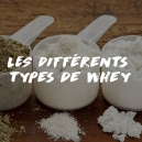 LES DIFFERENTS TYPES DE WHEY